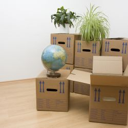 Things to Consider When Moving to Your New Office