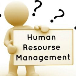 Reliable human resource management the key to a thriving business